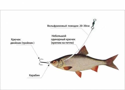 насадка живца для рыбалки